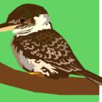 Kookaburra Playgroup – Lawson