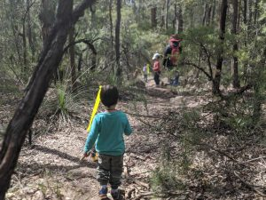 bush playgroup blaxland preschool kindergarten child bushwalking