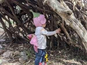 bush playgroup blaxland preschool kindergarten bush fairy in bush den
