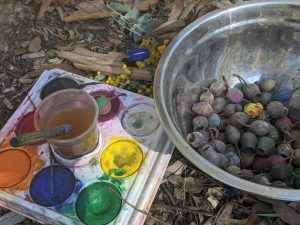 bush playgroup blaxland preschool kindergarten painted gumnuts