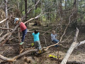 bush playgroup blaxland preschool kindergarten kids playing on branches, outdoor playground