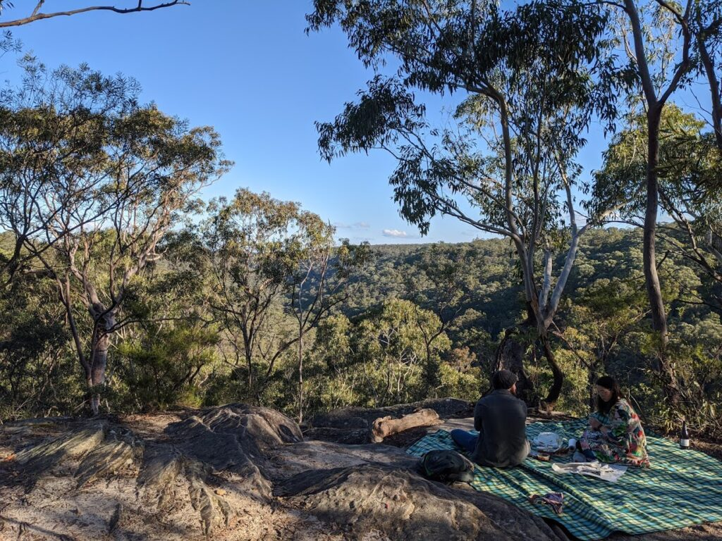 Lawson Lookout, at the end of the Fairy Dell track, bushwalks for kids in the Blue Mountains