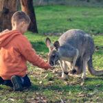 Blue Mountains Mums Winter School Holidays Activity Guide 2020: Our Favourite Fun Activities to Entertain Your Kids!