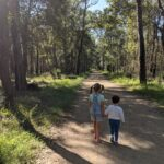 The Best Bushwalks for Kids in the Blue Mountains: A Guide for Families