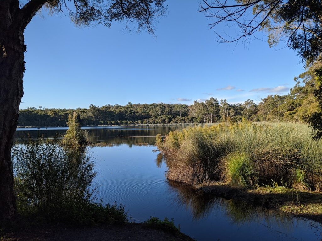 Glenbrook Lagoon, bushwalks for kids in the Blue Mountains