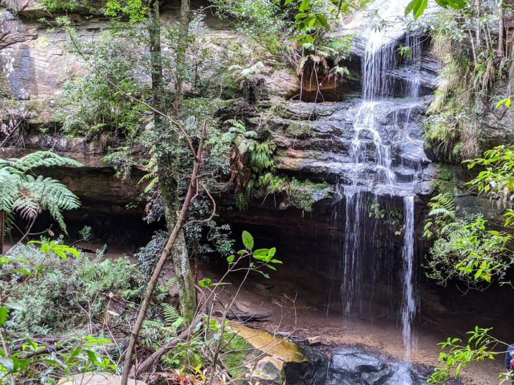 Horseshoe and Glow Worm Nook Falls, Hazelbrook, bushwalks for kids in the Blue Mountains