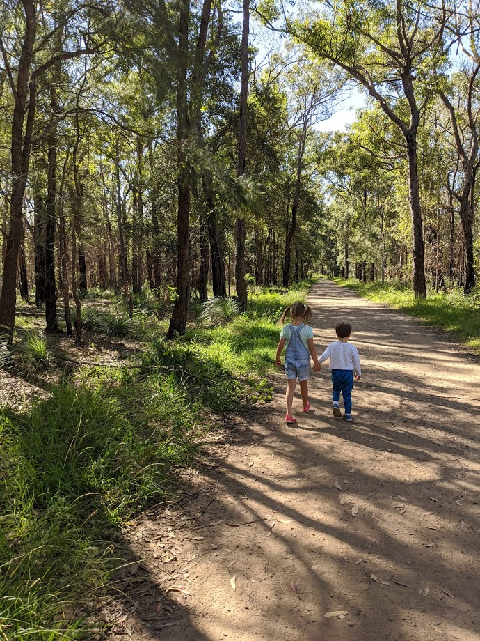 Marge's Lookout and Elizabeth Lookout walk,bushwalks for kids in the Blue Mountains