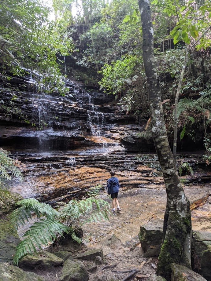 Waterfall Loop Track South Lawson, bushwalks for kids in the Blue Mountains
