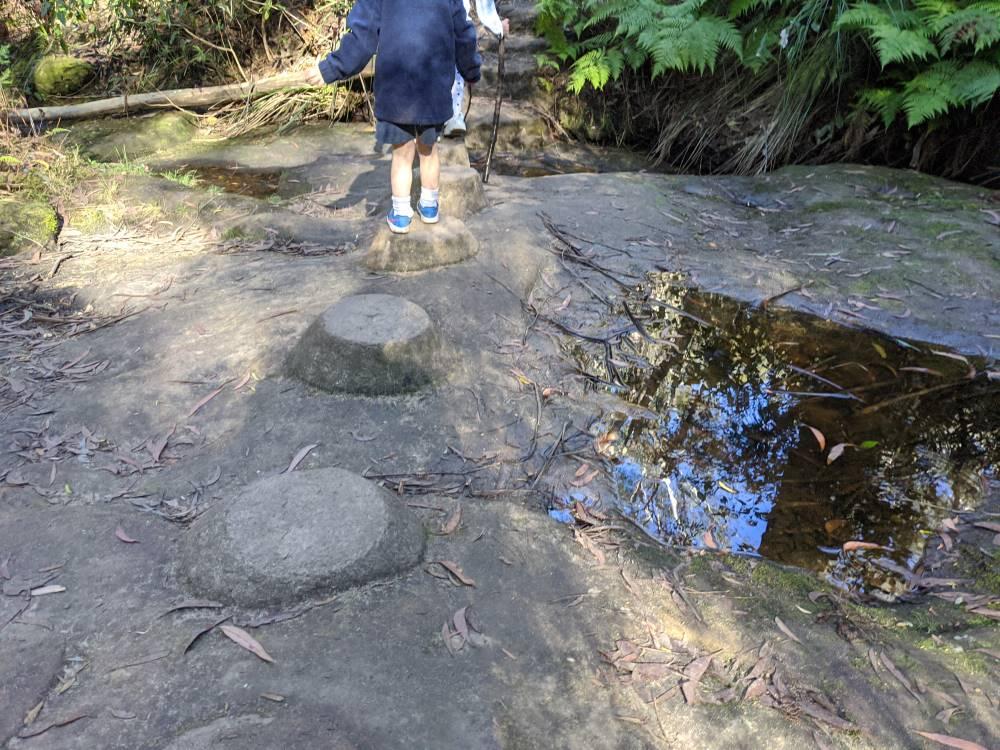 birdwood gully stepping stones