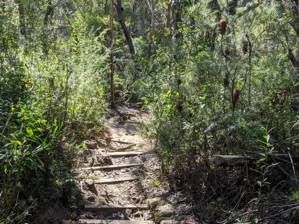 birdwood gully stairs