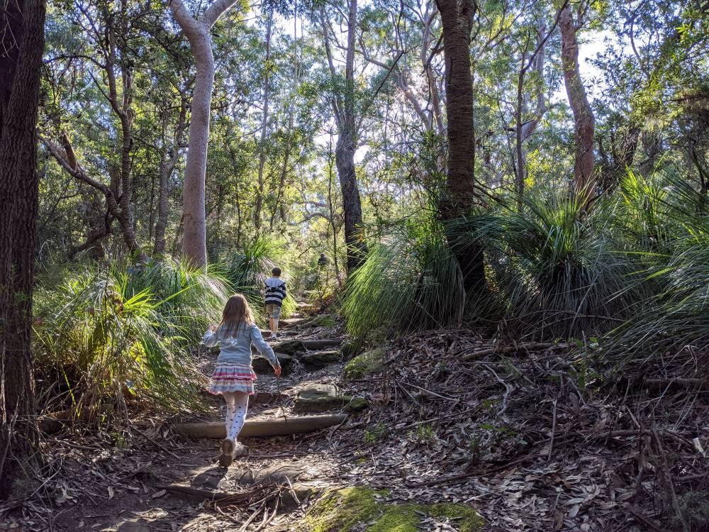 birdwood gully bushwalk for children