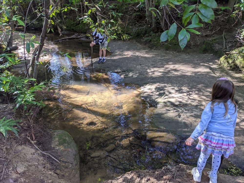 birdwood gully kids playing