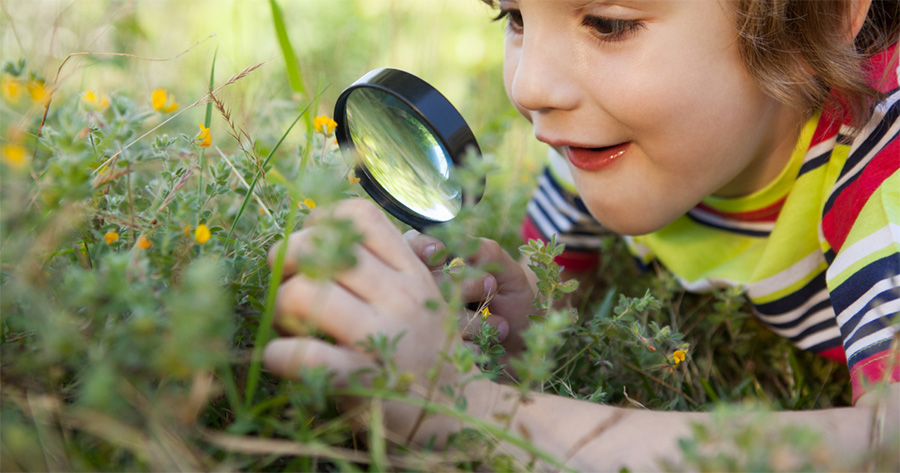 children learn about the bush at bush playgroup in the Blue Mountains by using a magnifying glass