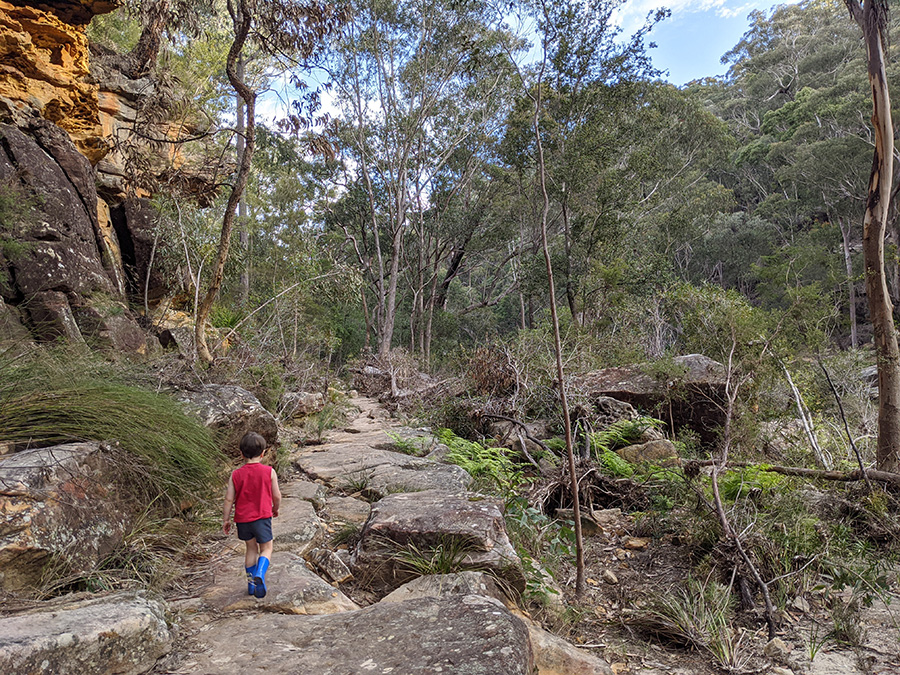 children love bushwalks at Blue Pool at bush playgroup in the Blue Mountains