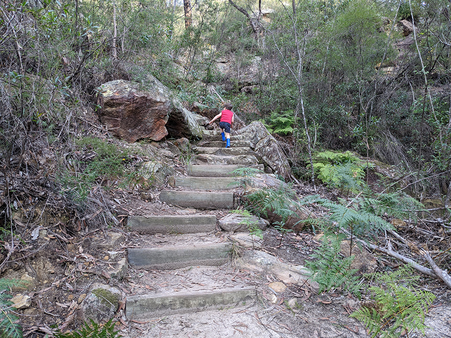 Children get fit on bush walks in the Blue Mountains when they do bush playgroup