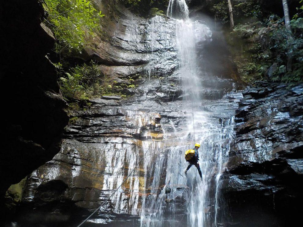 high and wild adventure tour provider katoomba blue mountains