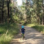 COVID Safe Ideas For The School Holidays In The Blue Mountains