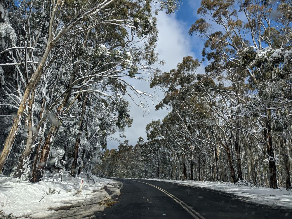 oberon, blue mountains snow, road safety
