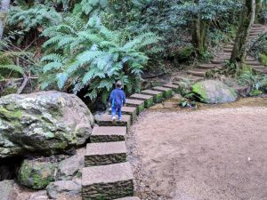 pool of siloam leura stepping stones