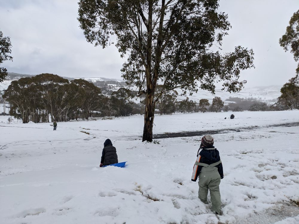 tobogganing in the snow in the blue mountains