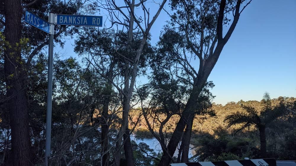 wentworth falls lake walk banksia road