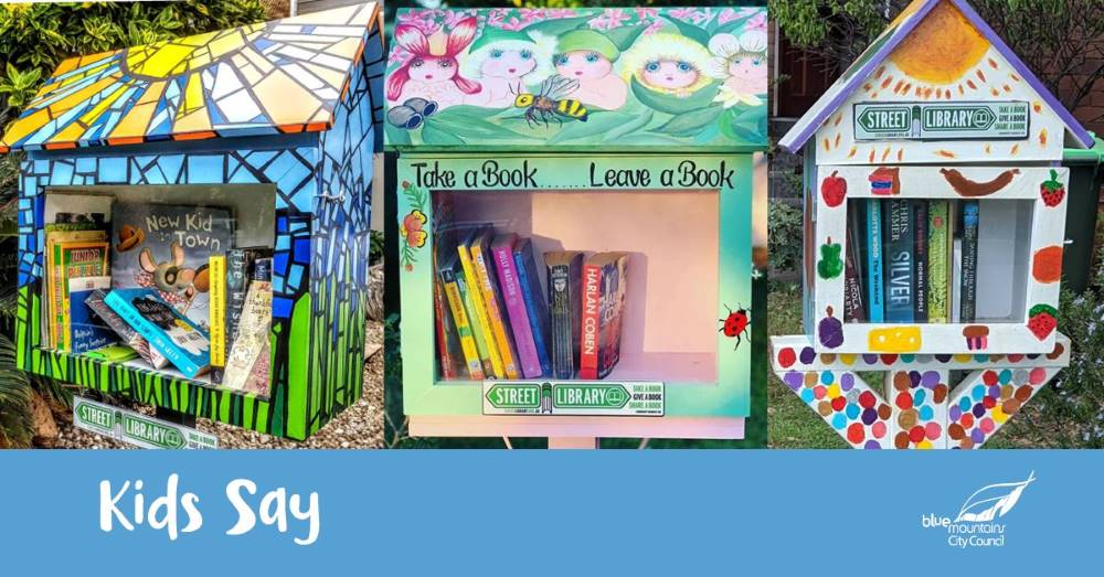 blue mountains city council street libraries
