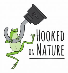 hooked on nature blue mountains
