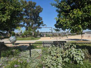 livvi's place jordan springs garden