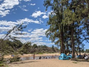 yarramundi reserve blue mountains beach