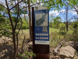 yarramundi reserve blue mountains walking trail