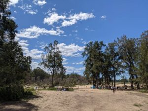 yarramundi reserve blue mountains long view