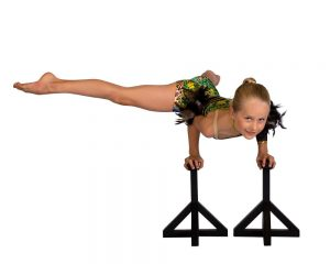 Dance On Pointe Blaxland dance and circus school