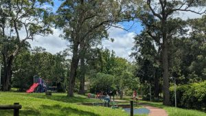 buttonshaw park springwood