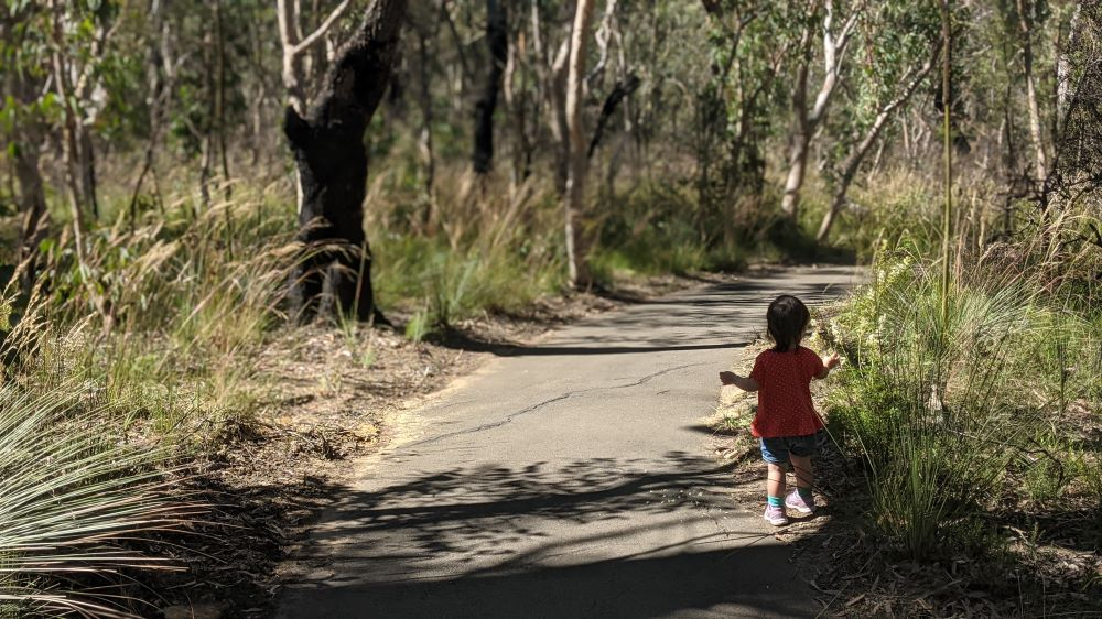 fairfax heritage track blackheath blue mountains national park girl running