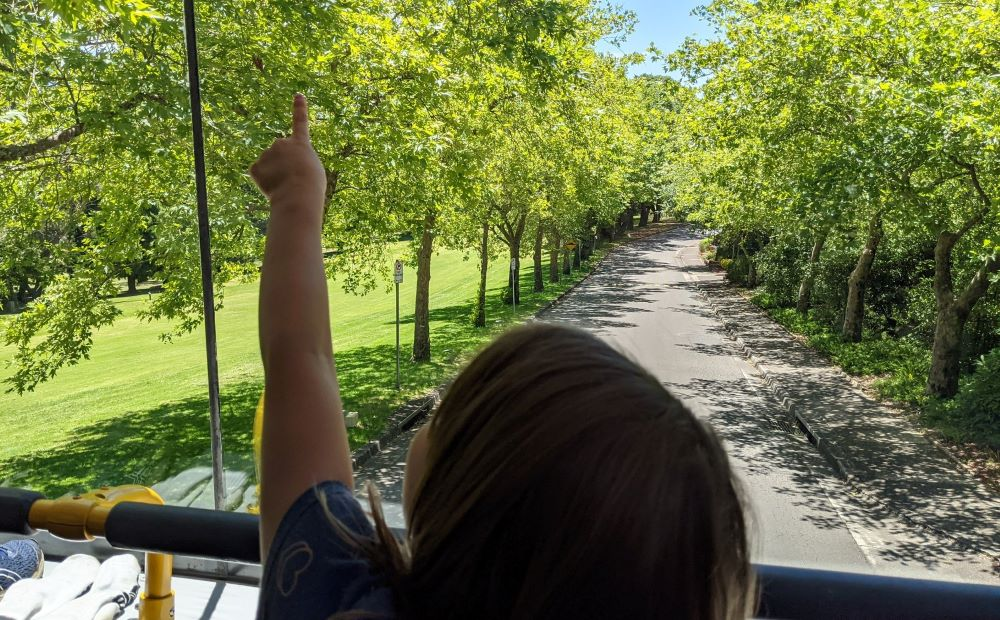girl exploring on blue mountains explorer bus