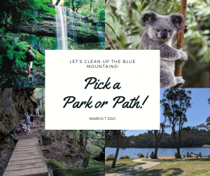 clean up the blue mountains