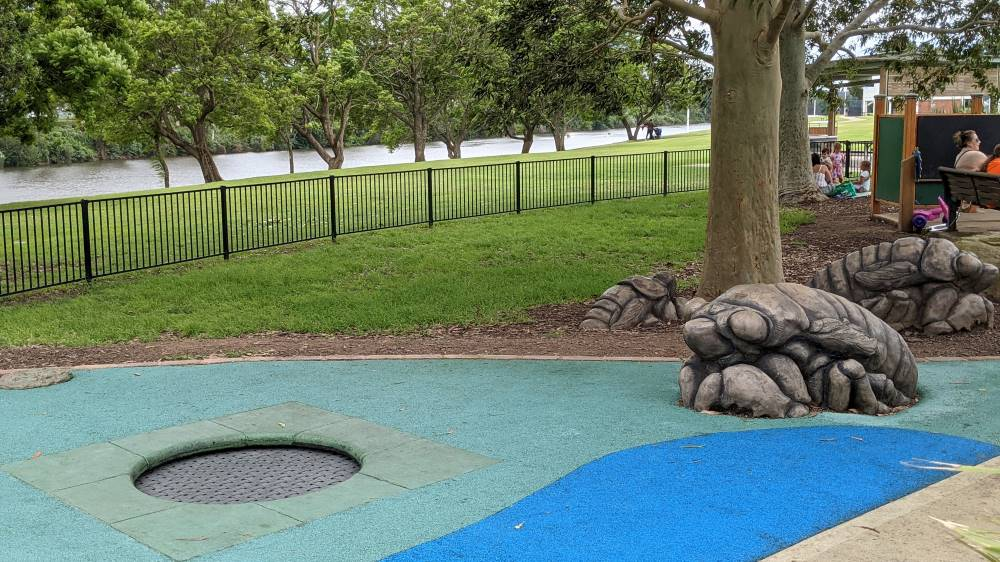 trampoline and turtles at Governor Phillip Park Windsor