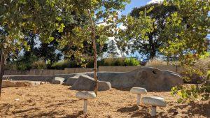 lithgow adventure playground lizard and mushroom seats