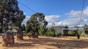 lithgow adventure playground dual flying fox