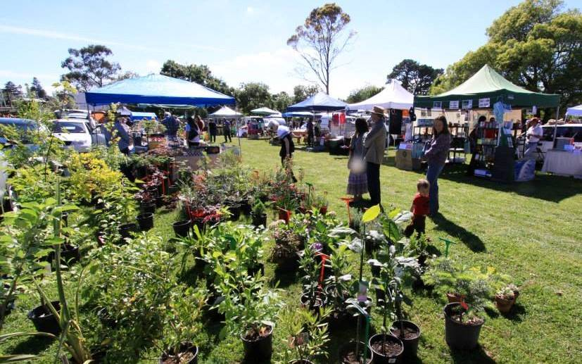 Things To Do In The Blue Mountains visit a blue mountains market like lawson magpie markets