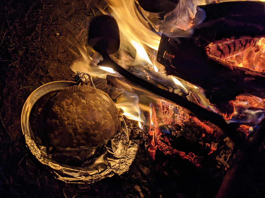 fun activities for kids firepit cooking