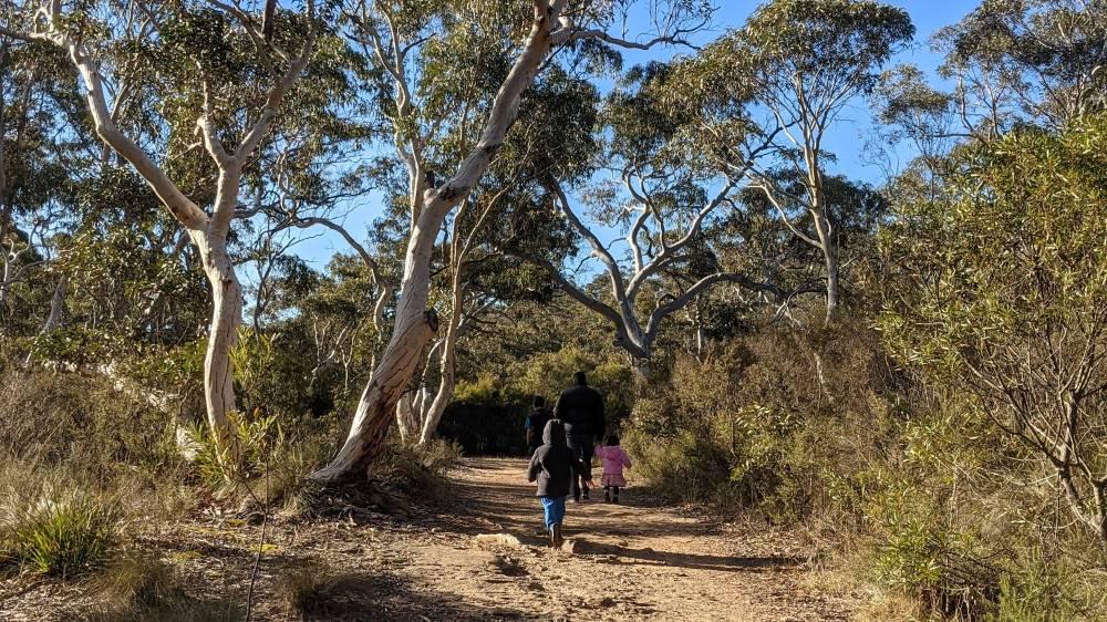 Minnehaha Falls Track Katoomba bushwalk