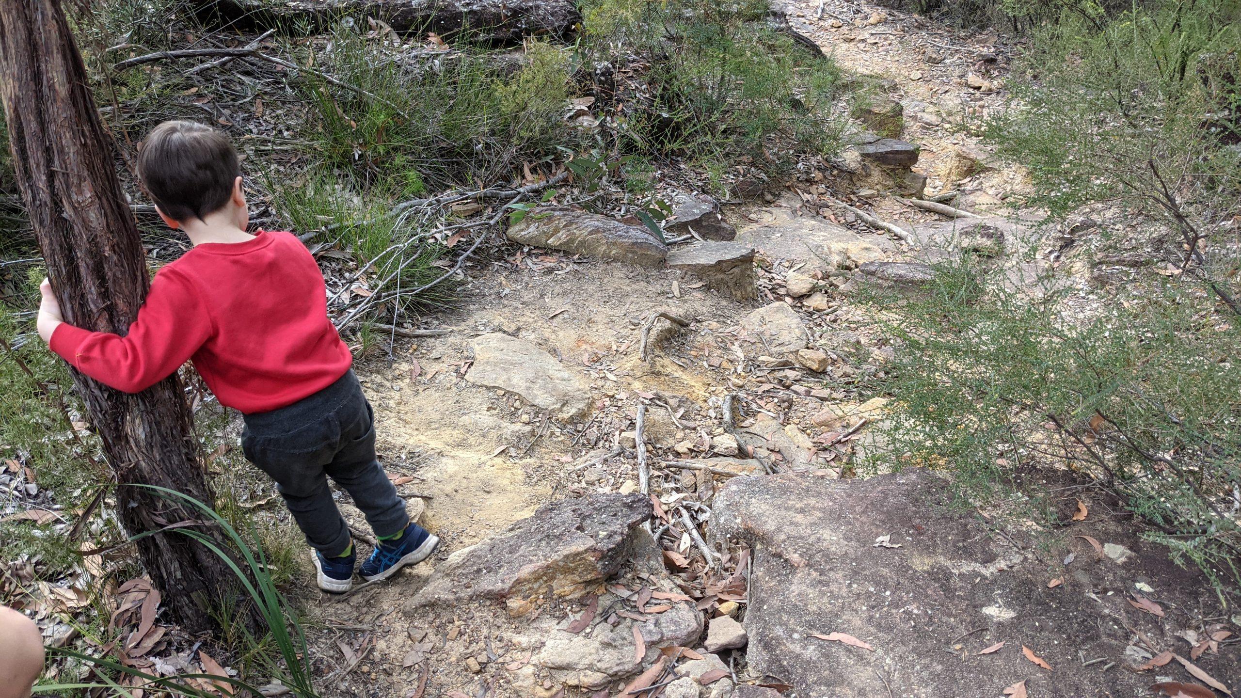 Duck Hole Track Glenbrook boy carefully climbing down rocks