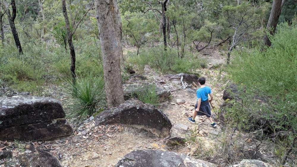 Duck Hole Track Glenbrook rocks to navigate