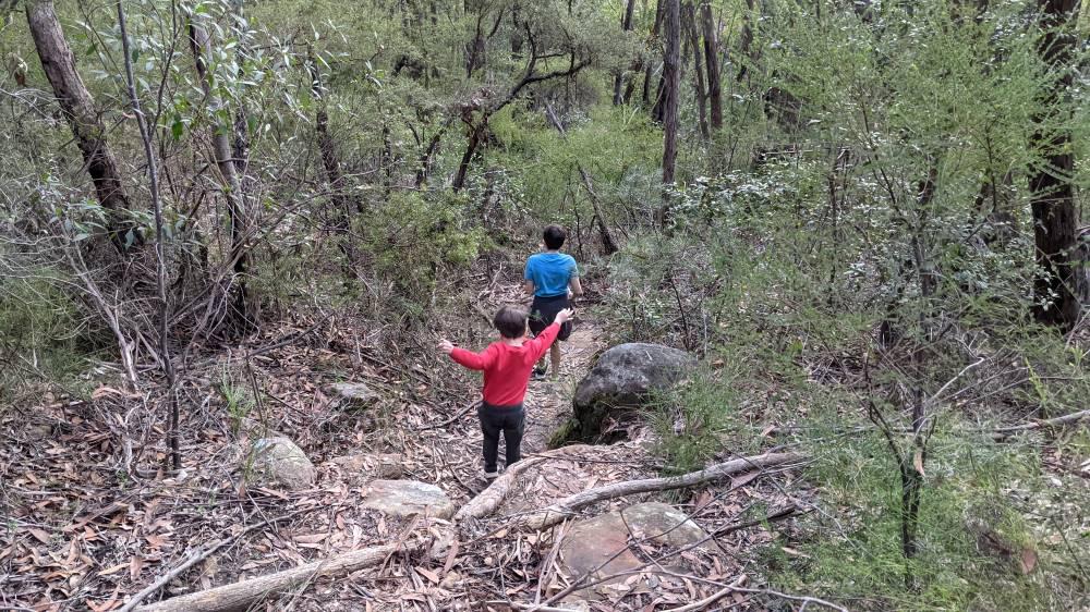 Duck Hole Track Glenbrook boys jumping down rocks