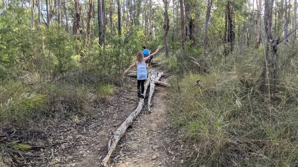 Duck Hole Track Glenbrook girl balancing on a log