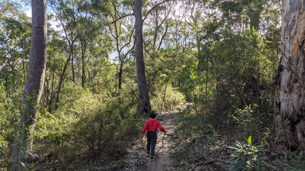 Duck Hole Track Glenbrook boy in red jumper walking with stick in hand