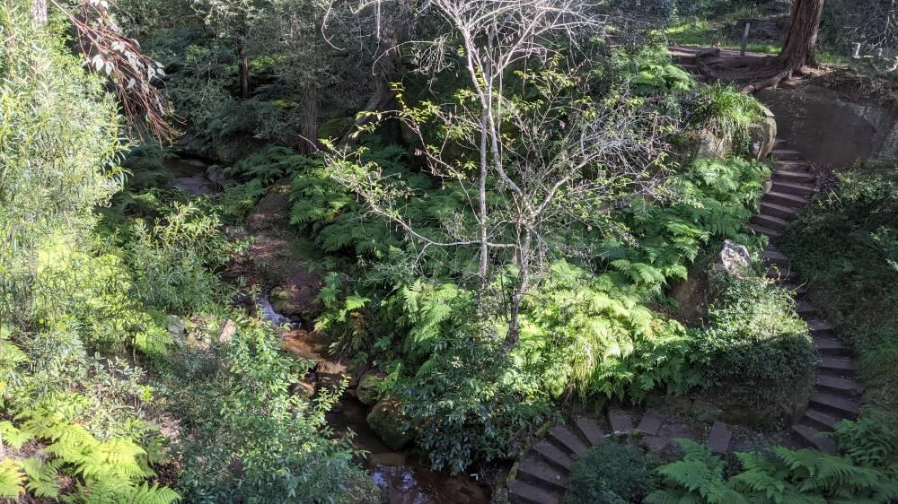 lennox bridge blaxland beautiful stairs