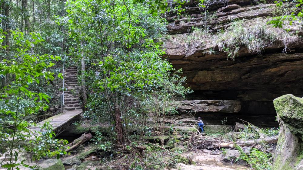 There is a large cave to explore at Dantes Glen Lawson.